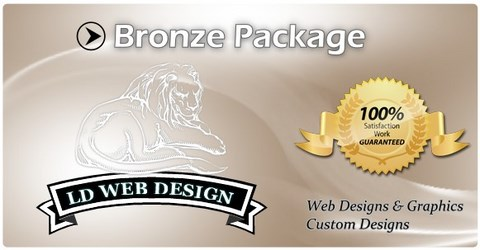 Bronze Web Design Package